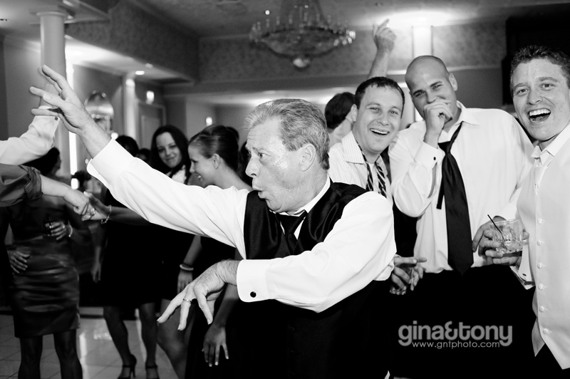 chicago wedding photographers, the cotillion wedding, palatine wedding, chocolate brown and plum wedding