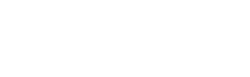 Wedding Photographers Chicago | Portrait Photography Chicago | Chicago Family Photographer