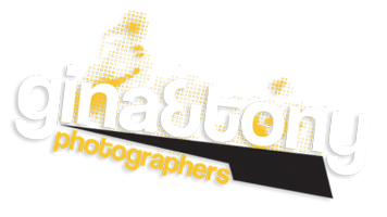 gina&tony|photographers – chicago wedding photographers logo